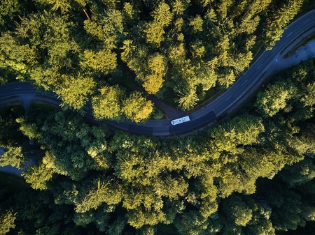 Widok z góry na ścieżkę przez drzewa. Widok z balonu. Widok drogi z góry wykonany przez quadrocoptera