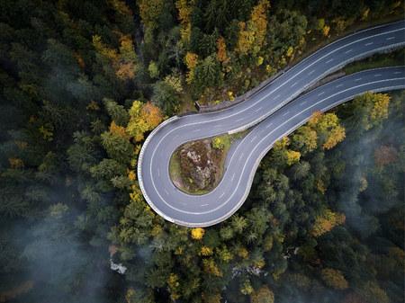 calle desde arriba a través de un bosque brumoso en otoño, vista aérea volando a través de las nubes con niebla y árboles