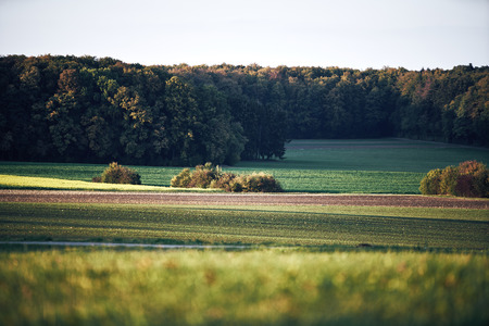 Autumn landscape with layers of agricultural fields in a moody fall scene