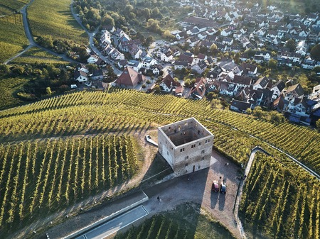 vineyards landscape on the hill from top with drone. Old stone ruin in the middle of the field. Green structure nature, dji 写真素材