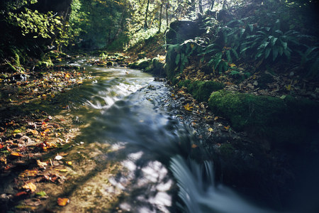 Long exposure of a river creek with a small waterfall. Sunset and strong detail bokeh view. blue calm warm water
