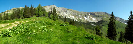 A part of the foothills of the Alps photo