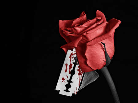 A black and white image of a rose with a bloody razor blade photo
