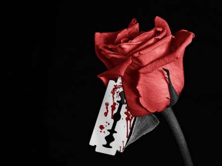 rosas negras: Una imagen en blanco y negro de una rosa con una hoja de afeitar sangrienta Foto de archivo