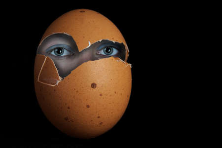 egghead: The image shows a photo composition of an egg with human eyes