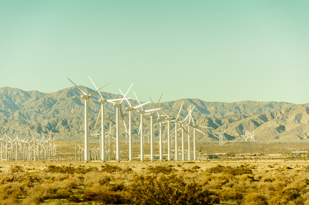 Windturbine field in California with mountains in the background