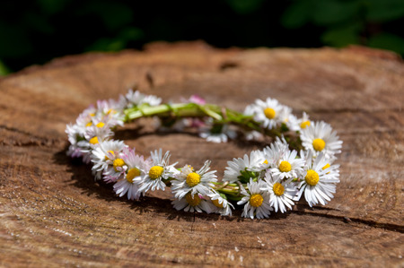 Daisy flower bracelet in the sun on a wooden surface