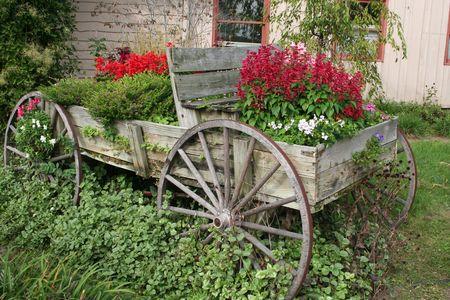 carreta madera: Vag�n jard�n de flores  Foto de archivo