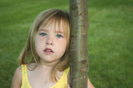 somber: Somber Tree Hugger 114 Stock Photo