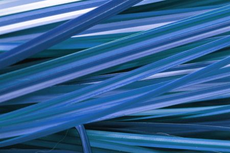 Grass Background Blue