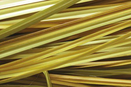 semblance: Grass background yellow