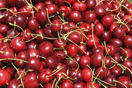Red Cherries Banco de Imagens