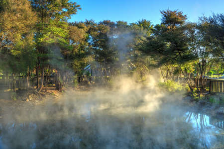 Steam rising from a geothermal hot spring surrounded by trees in Kuirau Park, Rotorua, New Zealand