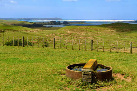 A circular water trough for animals on a coastal farm. Photographed in Northland, New Zealand