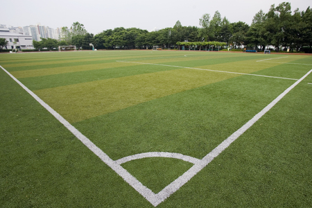 turf: ground covered with artificial turf.