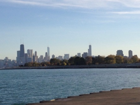 The Chicago Skyline Reklamní fotografie