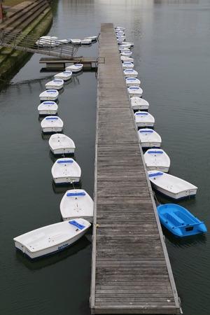 Row Boats Standard-Bild
