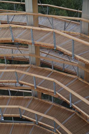 wood path Standard-Bild