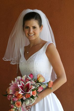 a bride poses Stock Photo