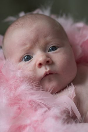 feather boa: baby in feather boa Stock Photo