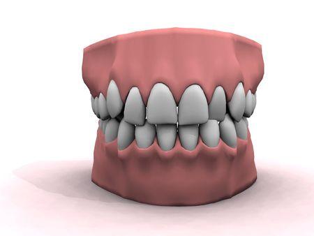 teeth model showing good oral hygiene