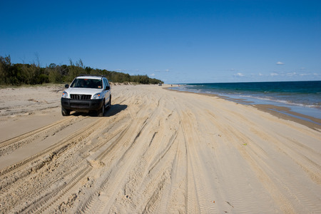 cars drive up and down the beach on Fraser island, there are no roads