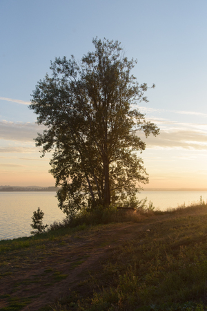Tree beside lake in Votkinsk at sunset Stock Photo