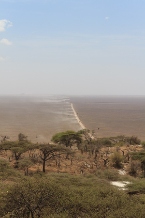 View from hill of Serengeti plain with dusty track in Tanzania