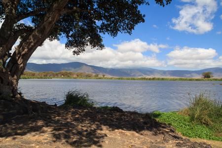 View of lake and edge of Ngorongoro Crater, Tanzania