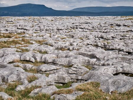 Limestone pavement - an area of limestone eroded by water - in the Yorkshire Dales, UK, with Pen-y-ghent in the background Banco de Imagens