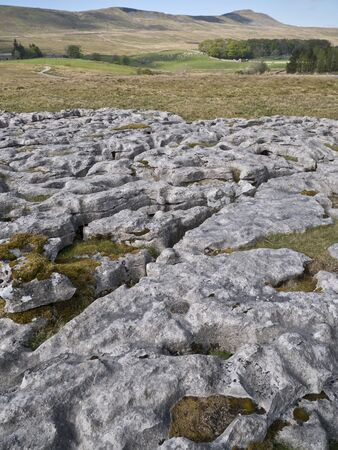 Limestone pavement - an area of limestone eroded by water - on Scales Moor in the Yorkshire Dales, UK, with Whernside in the background