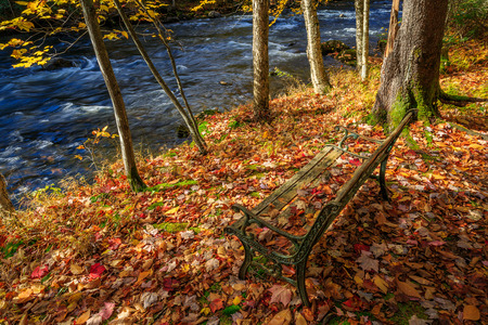 Park bench covered with dead leaves near a small river