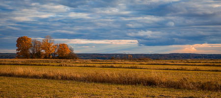 Nice and colorful autumnal sunset over a field