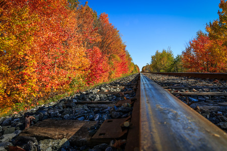 Railroad in the forest during a nice autumn day