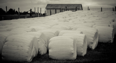 Black and white picture of hay bales in front of a barn Stock fotó - 36361229