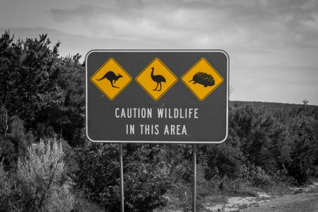 Black white and yellow accent of caution wildlife sign in Australia - artistic coloration Stock Photo
