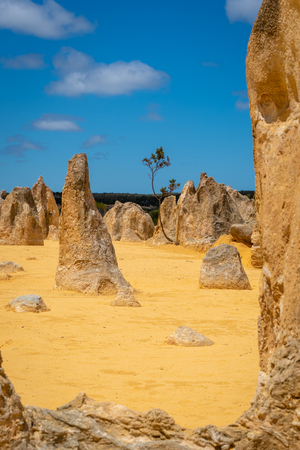 Upright standing rock formations at the Pinnacles Desert, Western Australia