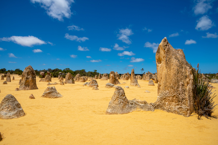 Upright standing rocks at the Pinnacles Desert in the west of Australia Stock Photo