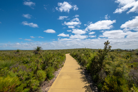 Hiking path through beautiful green landscape in Western Australia at the Nilgen Nature Reserve