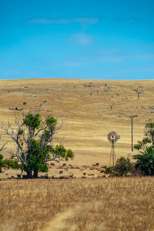 Rusty windmill standing on dry farmland in Western Australia