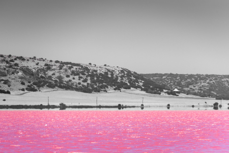 Black, White and accent color of Pink lake next to Gregory in Western Australia in front of the desert Stockfoto