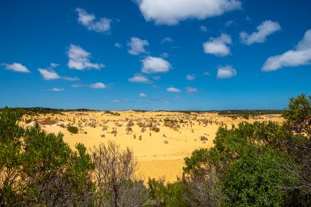 The Pinnacles Desert in the hot sun of Western Australia