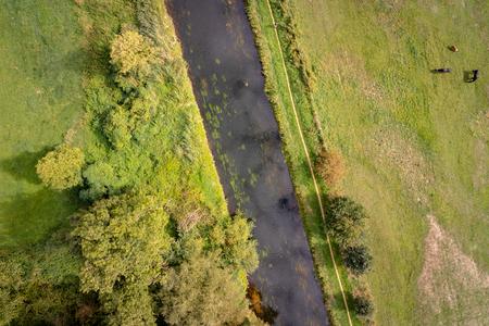 Horses on a meadows besides the river niers at the West German region Niederrhein
