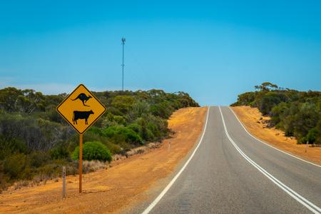 Warning kangaroos and cows sign on Australian bush road near BillaBong Roadhouse