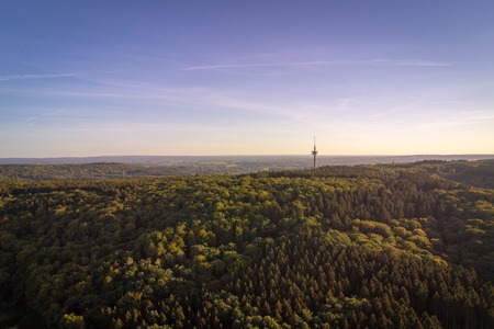 Mixed tree forrest covering hills in the Eifel region in West Germany with setting sunlight