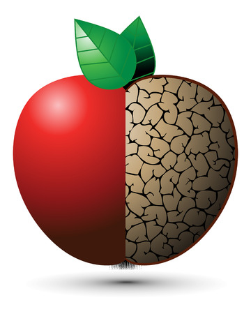 rotten fruit: Good Apple, Bad Apple Illustration