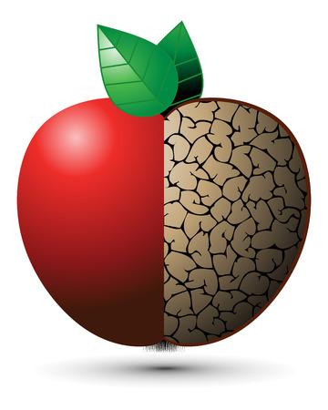 spores: Good Apple, Bad Apple Illustration
