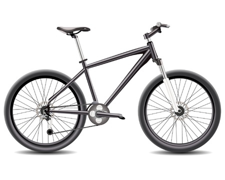 Bicycle isolated  Vector