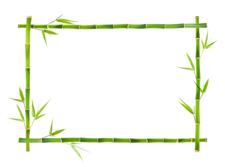 bamboo plant: Bamboo frame  Stock Photo