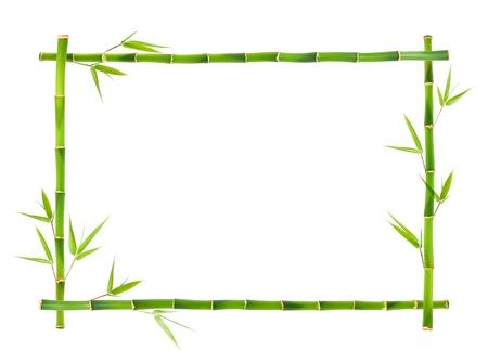 lucky bamboo: Bamboo frame  Stock Photo